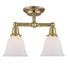 Carlton™ Two Light Flush Ceiling Fixture with 2-1/4 in. shade holders