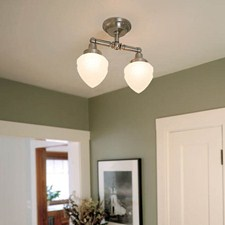 Carlton™ Two Light Flush Ceiling Fixture with 3-1/4 in. shade holder