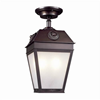French Country Lantern™ 9 in. Wide Solid Stem Exterior Pendant Light