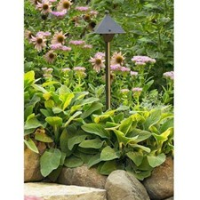 Market™ 6 in. Wide Path Light Low Voltage Extended Height