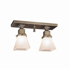 Spring Green™ Two Light Flush Ceiling Fixture with 2-1/4 in. shade holders