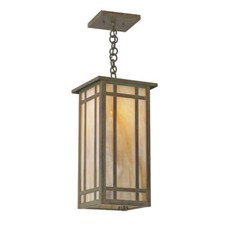 Studio Lantern™ 8 in. Wide Chain Hung Exterior Pendant Light