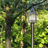 Lancaster™ Lantern 7 in. Clear Seeded Art Glass Panel Post Light