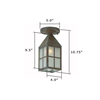 Carriage Lantern™ 4 in. Patio Ceiling Light