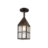Carriage Lantern™ 6 in. Modern Exterior Pendant Light