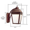 Provincial Lantern™ 9 in. Traditional Exterior Wall Light