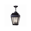 Provincial Lantern™ 13 in. Traditional Pendant Light