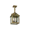 Stonehaven Lantern™ 10 in. Wide Solid Stem Exterior Pendant Light