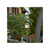 Stonehaven™ Lantern 10 in. Wide Exterior Post Light
