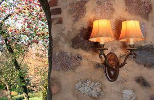 Double stemmed shaded wall sconce